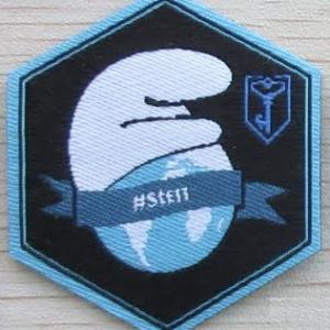 StE_patch